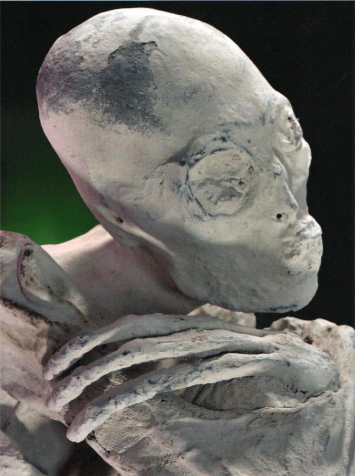 Les étranges créatures tridactyles de Nazca